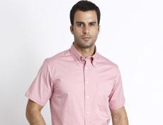 男士全棉高支休闲短袖衬衫G510M